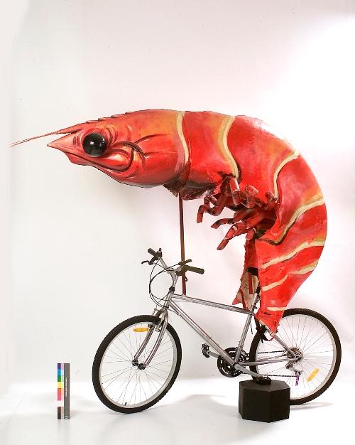 Titus Bike Pr0n-shrimp-bike.jpg
