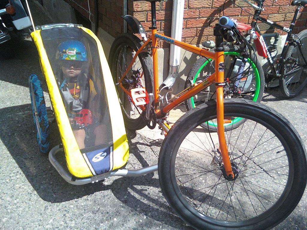 Sidecar on new bike-sidecar-rig.jpg