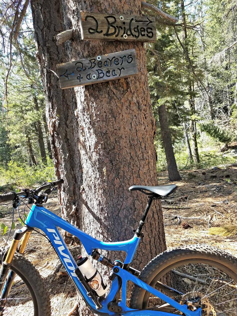 bike +  bridge pics-signs.jpg
