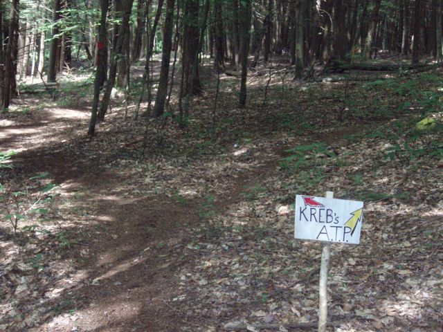 """Post your """"Trail Signs"""" here-signtology6.jpg"""