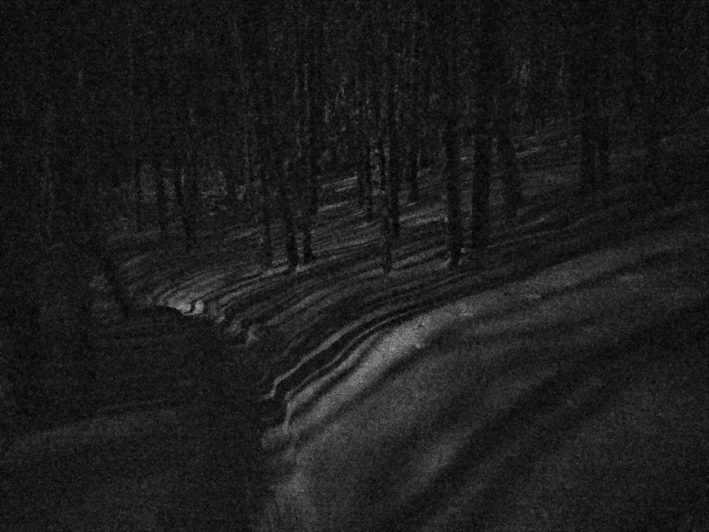 Night Riding Photos Thread-simg_20180130_193706.jpg