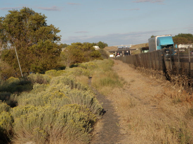 Moses Lake Area Trails-single-track-formerly-doubltrack-leading-back-i-90-right_a.jpg