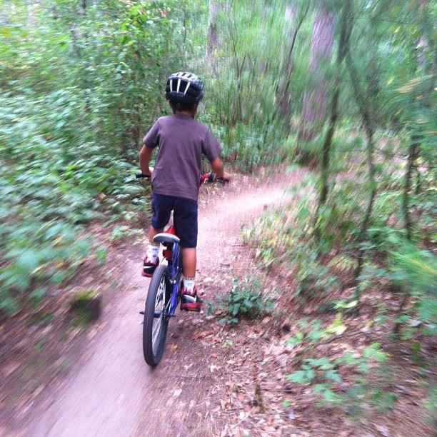 Parents - Roll call here.-singletrack_zps4d27d036.jpg