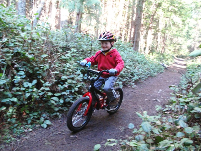 Mountain Bike vs BMX (for 6y/o)-singletrackkai.jpg