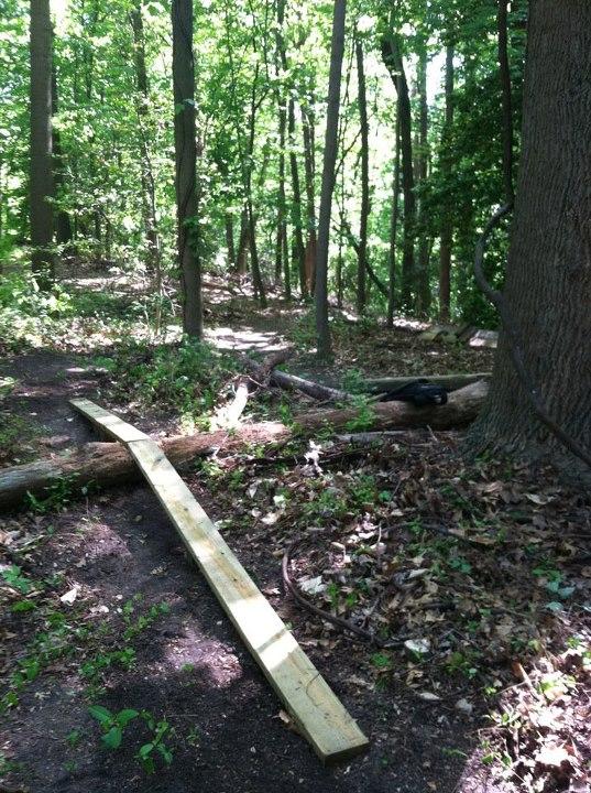 Backyard Trails-skinny-2.jpg