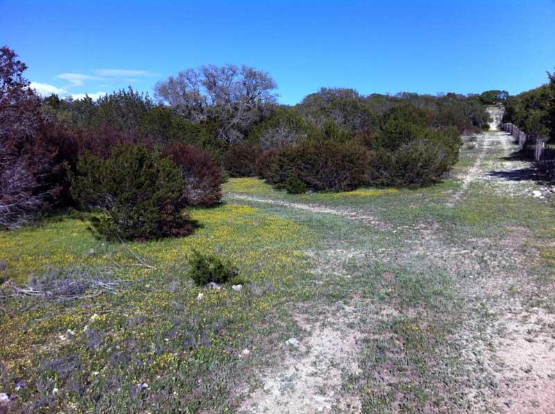 South Llano River State Park - Junction, TX-slsp.jpg