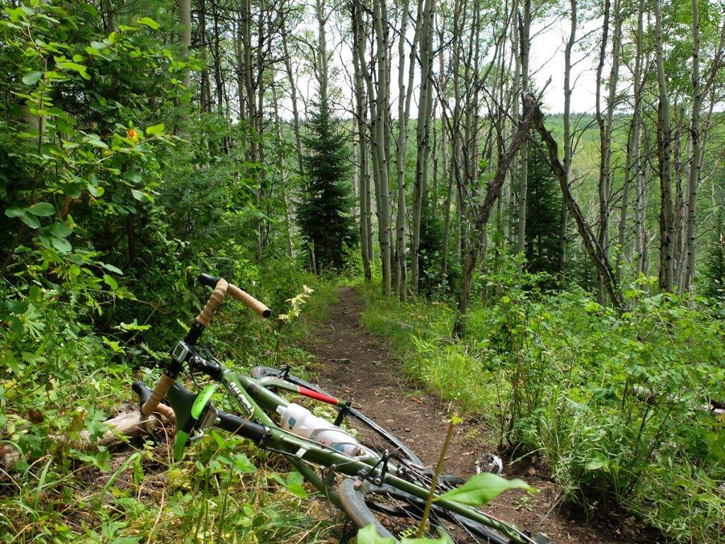 Cross Bikes on Singletrack - Post Your Photos-small.jpg