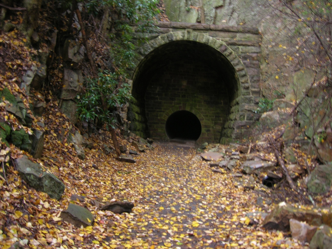 Bald Eagle State Forest-smalltunnel.jpg