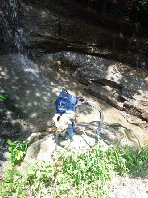Adventures with the Pisgah Gnome-smf-waterfall.jpg