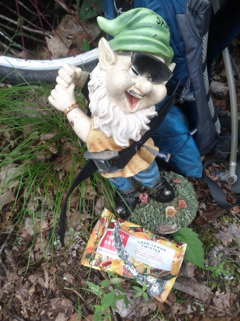 Adventures with the Pisgah Gnome-smf-probar.jpg