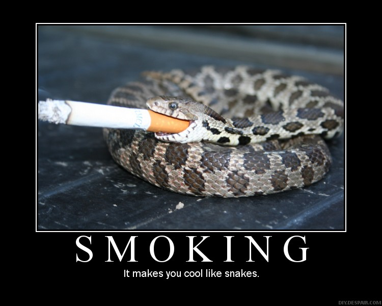 Trucker's Instigating Teh Silliness - T.I.T.S. (Night?) Ride-smoking-cool-like-snakes.jpg