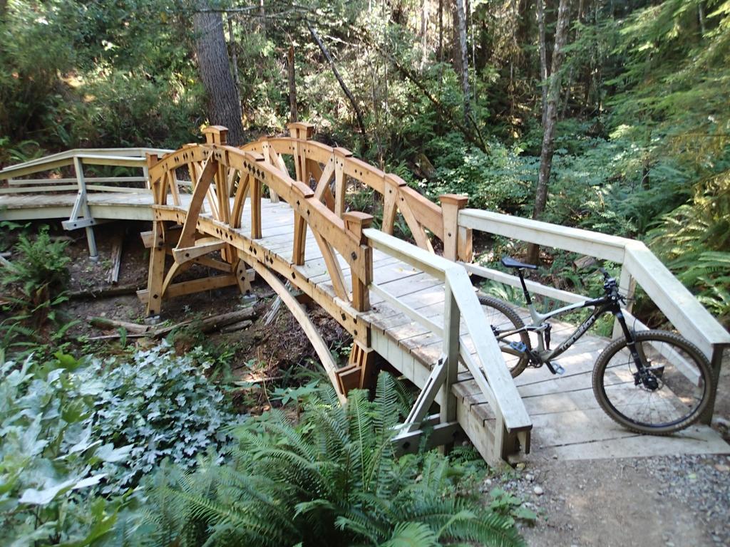 bike +  bridge pics-smp8095388.jpg