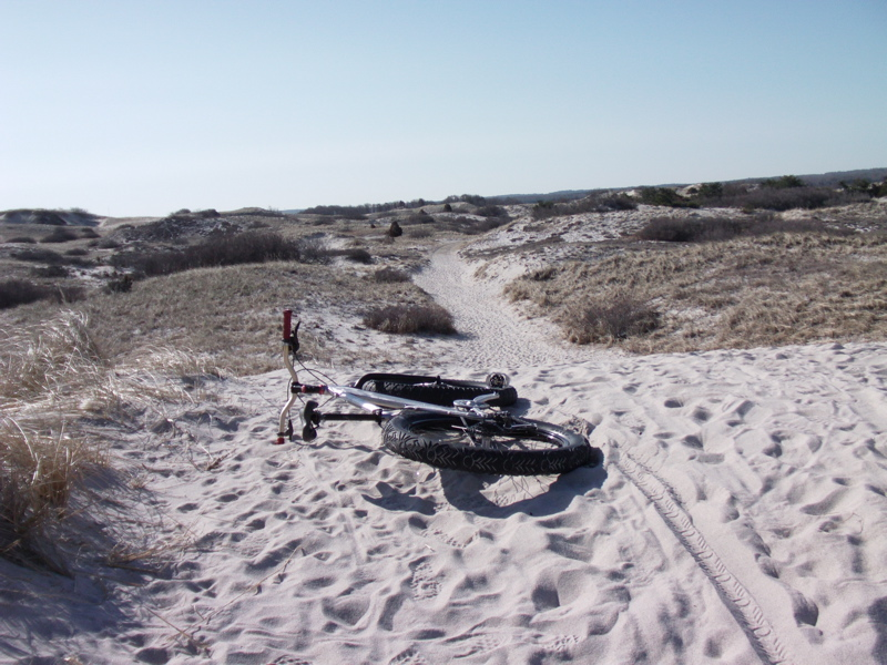 Beach/Sand riding picture thread.-sn1.jpg