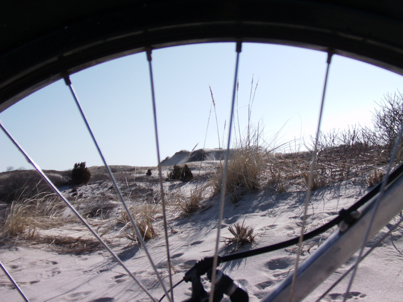 Beach/Sand riding picture thread.-sn2.jpg