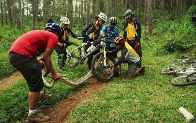 Snakes curbing my exploration-snake.jpg