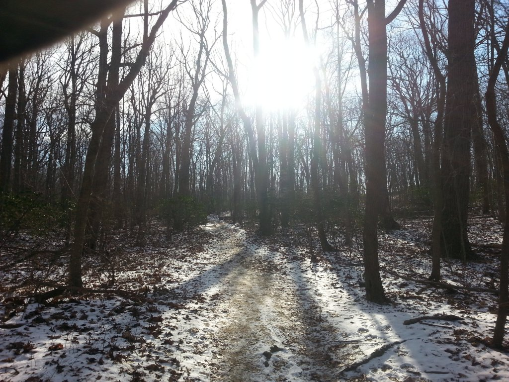 What is your ideal riding weather conditions/temp/humidty/time of day...-snow.jpg