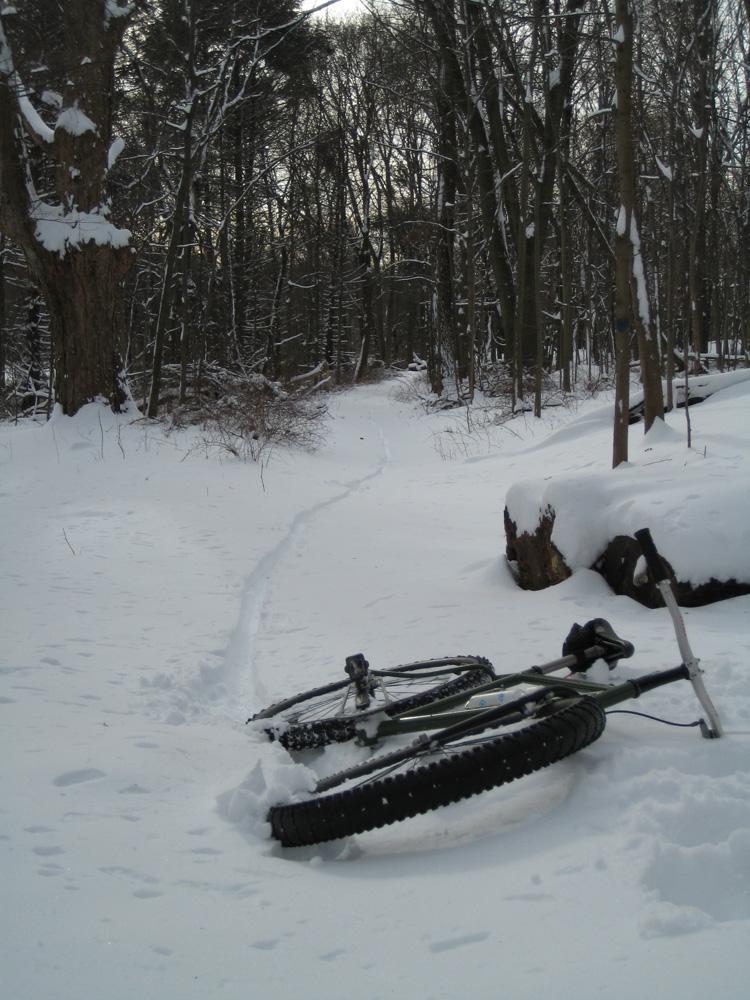 Daily fatbike pic thread-snow-ride-2.jpg