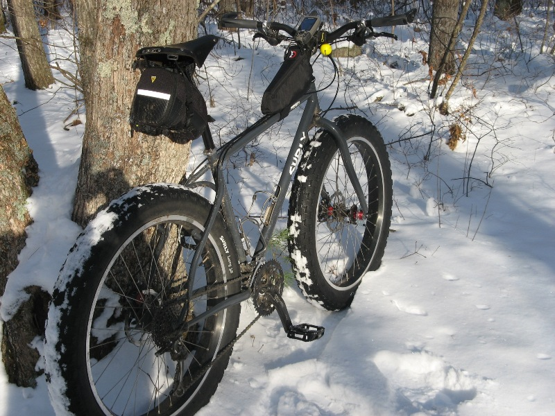 Daily fatbike pic thread-snow-ride-trees-getting-chopped-down-007.jpg