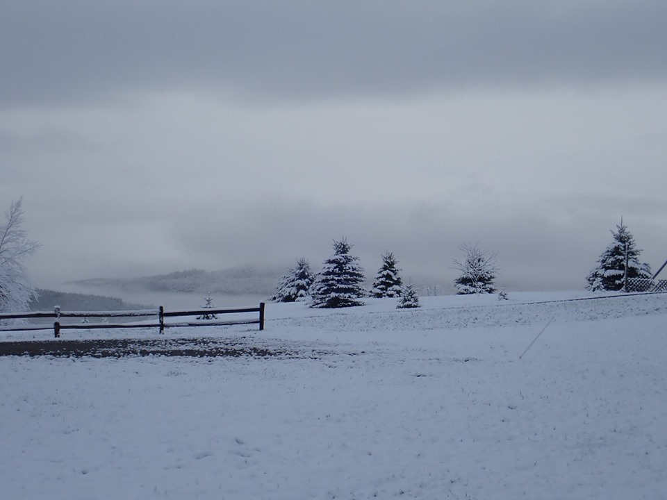 How was your commute today?-snow2019.05.14.jpg