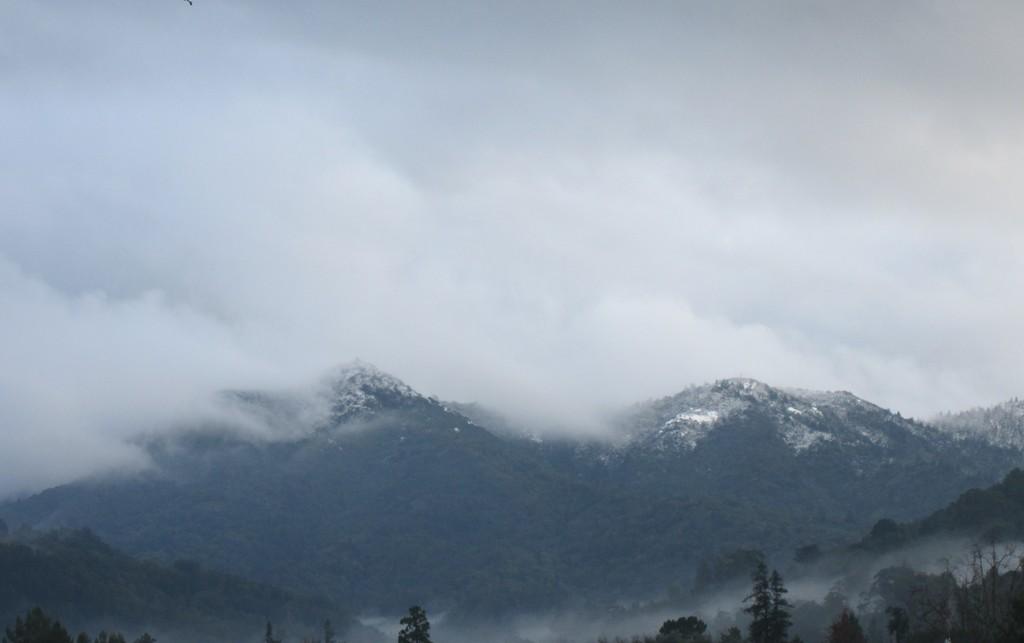 Photo Assignment: Snow-snow_on_tam2.jpg