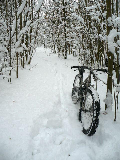 Daily fatbike pic thread-snowatstanmer2.jpg