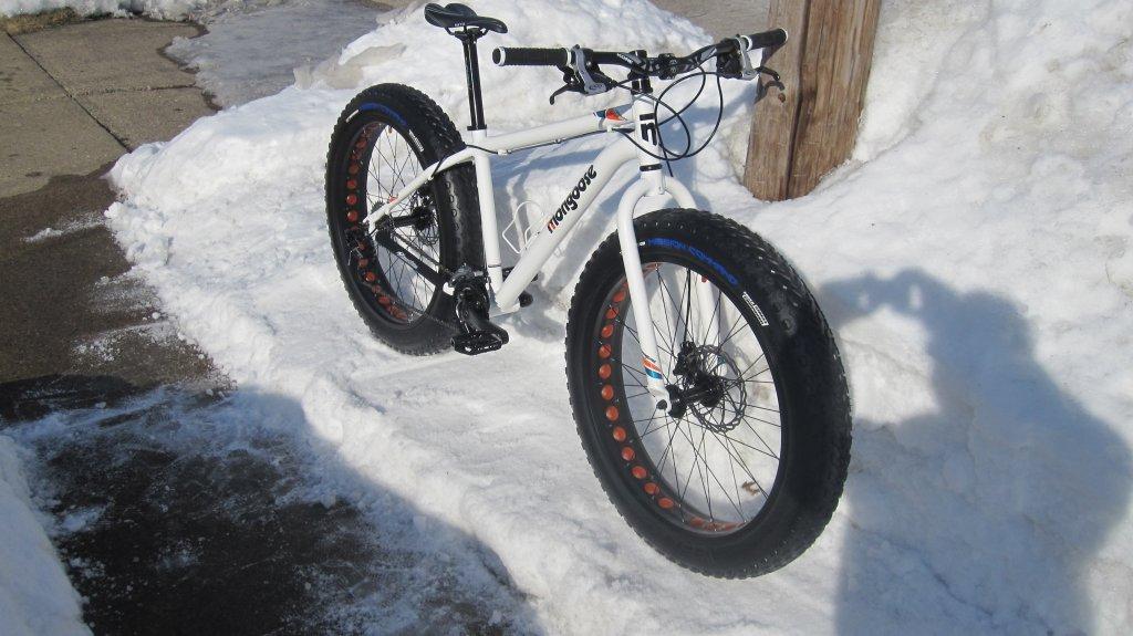 mongoose Vinson-snowmongo-013.jpg