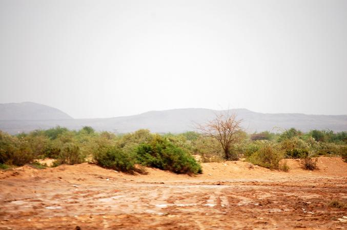 Djibouti Africa-somaliland.jpg