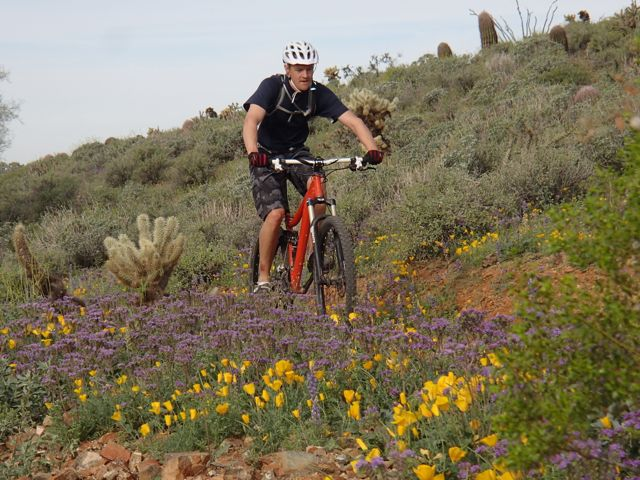 Quasi-AZSF Sonoran Trails Ride on Saturday AM-sonoran-north-azsf-mtb-ride-13.jpg
