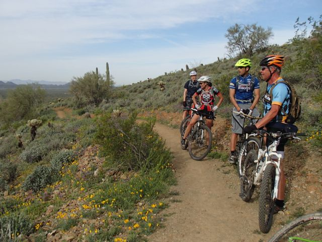 Quasi-AZSF Sonoran Trails Ride on Saturday AM-sonoran-north-azsf-mtb-ride-14.jpg