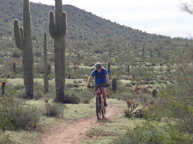 Quasi-AZSF Sonoran Trails Ride on Saturday AM-sonoran-north-azsf-mtb-ride-21.jpg