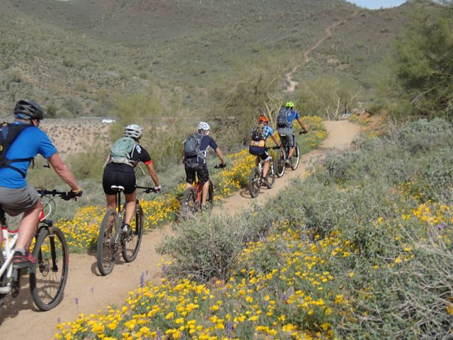Quasi-AZSF Sonoran Trails Ride on Saturday AM-sonoran-north-azsf-mtb-ride-26.jpg