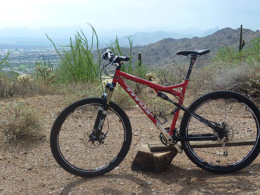 8/24/12: Photo Friday-sonoron-trail-bike-tortoise-2012-08-24-002.jpg
