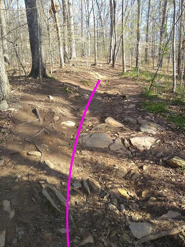 Line Choice and Trail Impact-sope_widened_trail.jpg