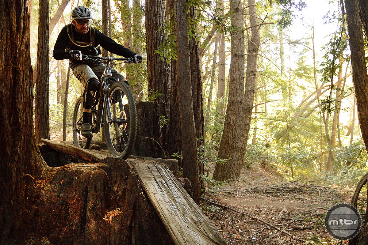 Soquel Demo Forest