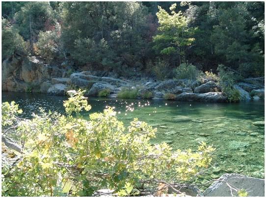 South Yuba Ridge Trail - Help Us Make It Happen!-south_yuba_ridge1.jpg