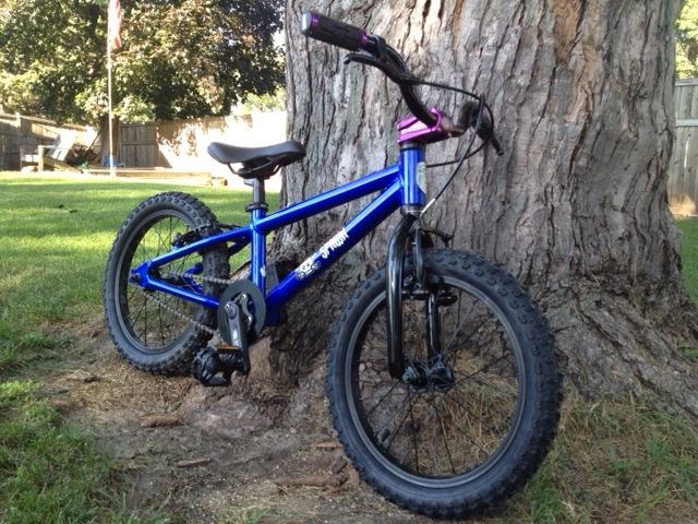 "6ccf7166a44 Review of the Spawn Cycles Banshee (16"" wheeled bike)-spawn2.jpg"