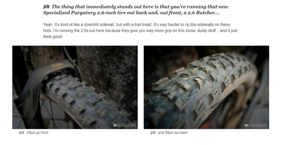 Specialized 29 x 2.6 Purgatory & Butcher Tires-spec-29-x-2.6-tires.jpg