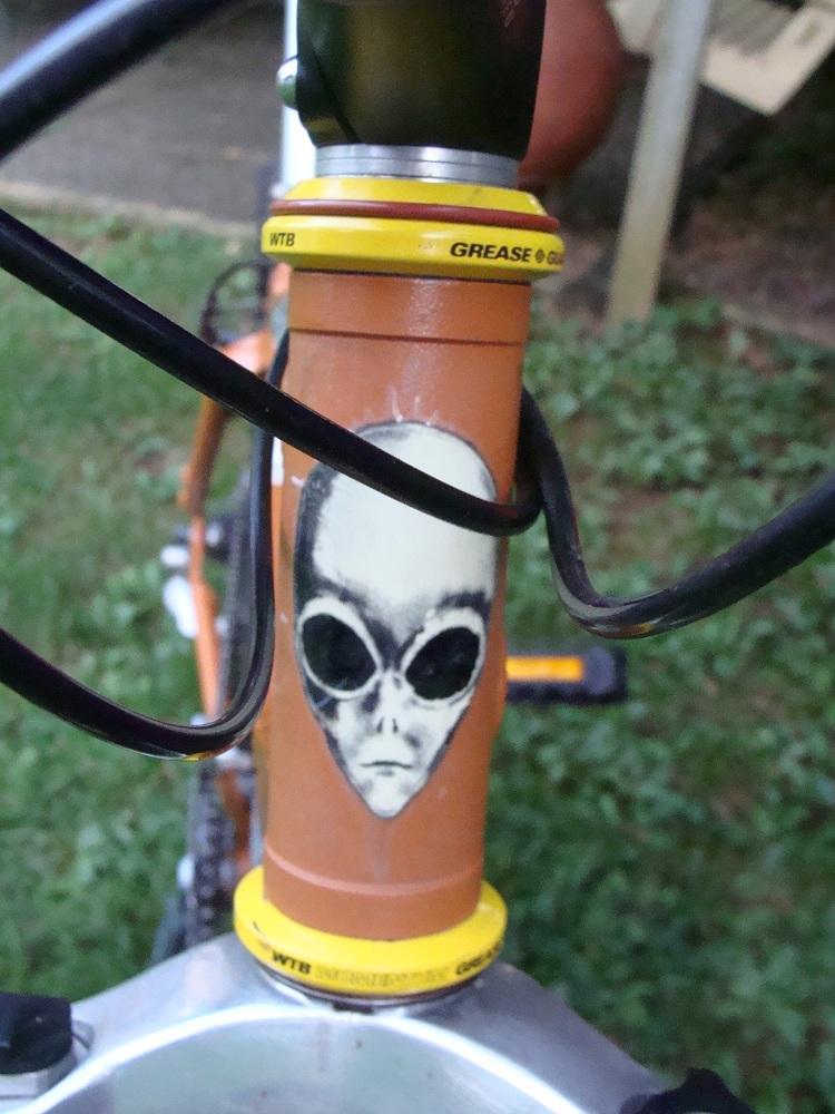 Spooky Junebug XT-spooky-005.jpg