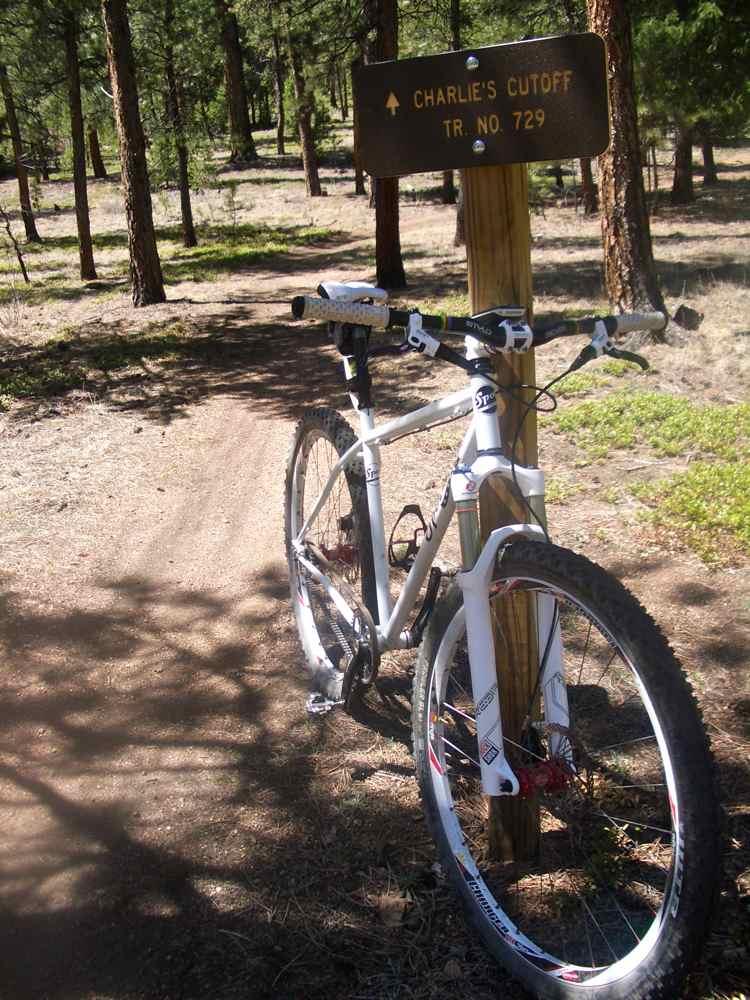 Denver Front Range Trail Conditions-spot-buff-creek.jpg