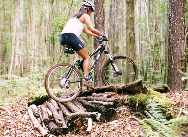 All Our Bikes-spot.jpg