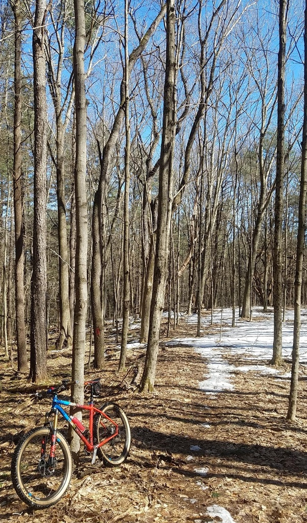 What are the current trail conditions in Mass?-spring-2019.jpg