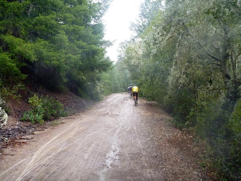 Spring Classic - Butano Fire Road