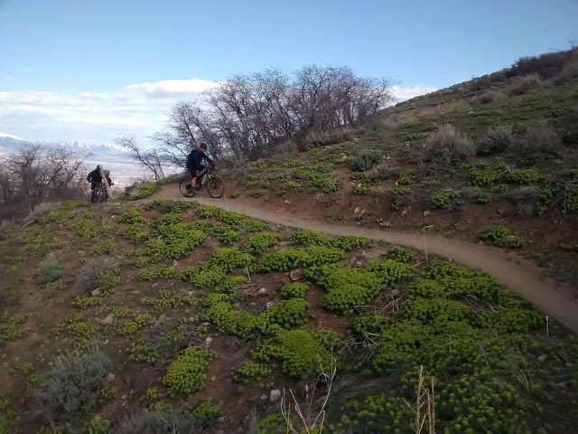 One picture, one line.  No whining. Something about YOUR last ride. [o]-spring-riding.jpg