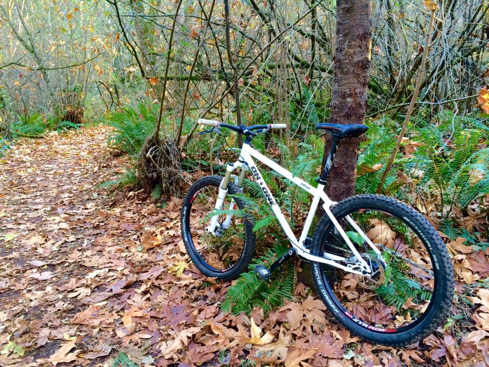 Show us a picture of your 26er MTB that you still use on the trails-ss2.jpg