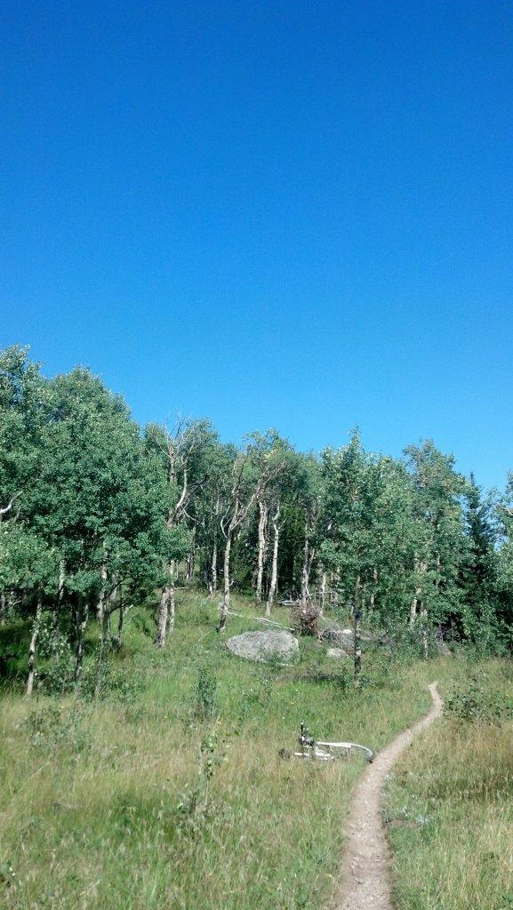 Trail Pics-ssv.jpg