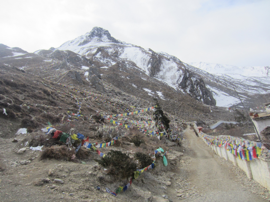 Stage 9 Muktinath