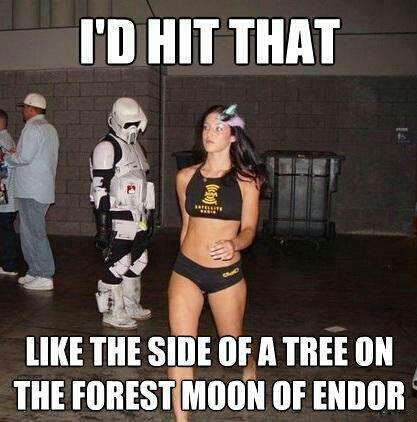 Name:  star-wars-endor.jpg Views: 934 Size:  33.6 KB