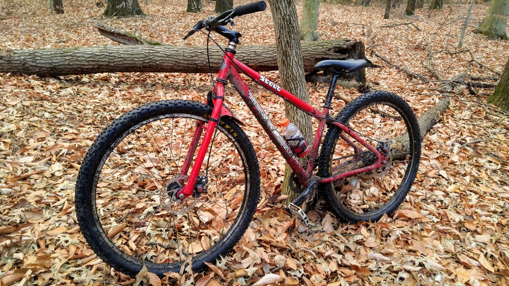 Post Pictures of your 29er-stout2.jpg