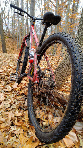 Post Pictures of your 29er-stout3.jpg