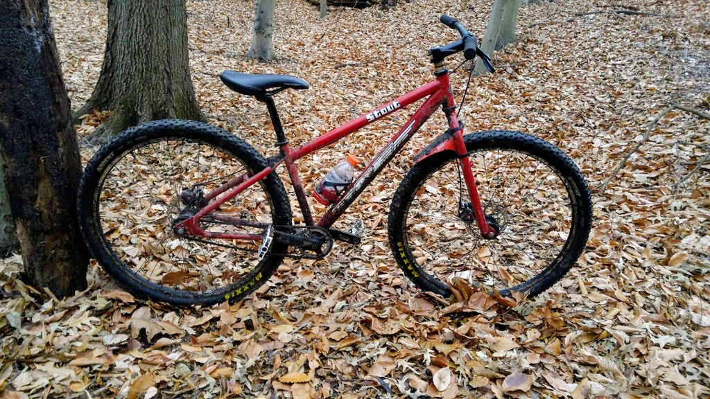 Post Pictures of your 29er-stout4.jpg